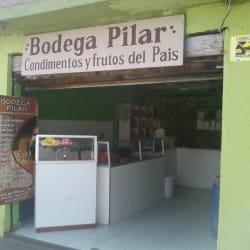 Bodega Pilar en Santiago