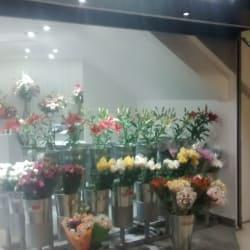 Just Flowers - Alto Las Condes en Santiago