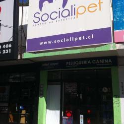 Socialipet en Santiago