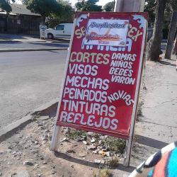 Salón Unisex Amelia en Santiago