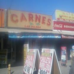 Carnicería Las Palmas en Santiago