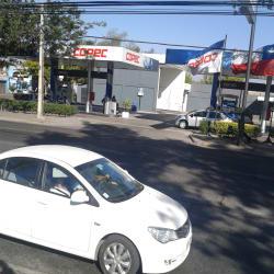 Copec - Gran Avenida / Lo Moreno en Santiago