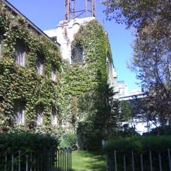 Colegio universitario Ingles en Santiago
