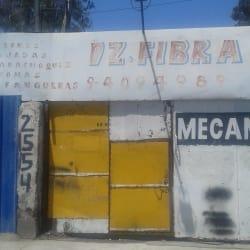DZ. Fibra en Santiago