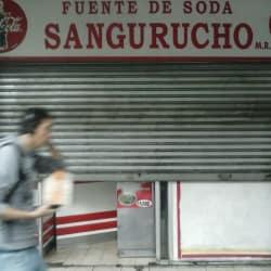Fuente de soda Sangurucho en Santiago