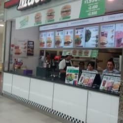 Juan Maestro - Mall Plaza Alameda en Santiago