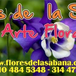 Flores Y Flores De La Sabana en Bogotá
