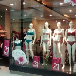 Flores - Mall Plaza Norte en Santiago