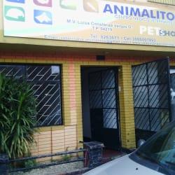 Centro Médico Veterinario Animalitos Funza en Bogotá