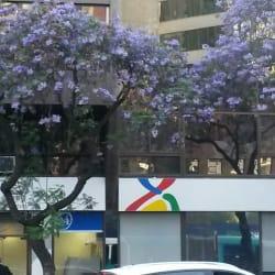 BCI - La Concepción en Santiago