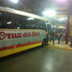 Buses Cruz del Sur - Terminal San Borja en Santiago