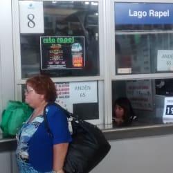 Buses Ruta Rapel - Terminal San Borja en Santiago