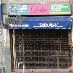 Casa Delia en Santiago