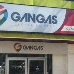 Gangas - Tobalaba en Santiago