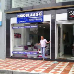 Moblilago en Bogotá