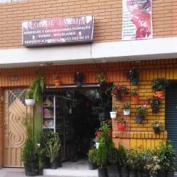 Vivero Flor de Jazmin en Bogotá