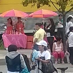 Venta de Salpicónes 145 en Bogotá