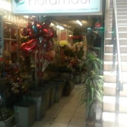 Floramour en Santiago
