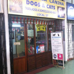 Dogs & Cats en Santiago