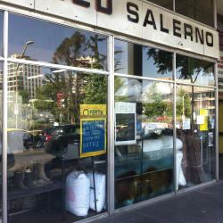 Lavaseco Salerno en Santiago