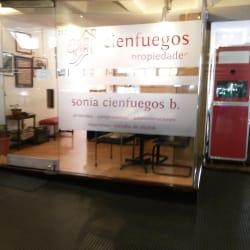 Cienfuegos Propiedades en Santiago
