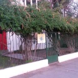 Mundo Verde en Santiago