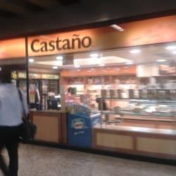 Castaño - Metro Estación Universidad de Chile en Santiago