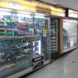 Tienda de Antigüedades en Santiago