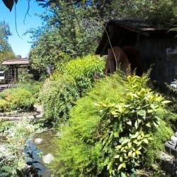 Jardín Japonés - Parque Metropolitano de Santiago en Santiago