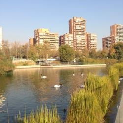 Parque Bicentenario Vitacura en Santiago