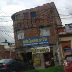 Auto Cauchos Del Sur en Bogotá