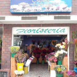 Moises  en Bogotá