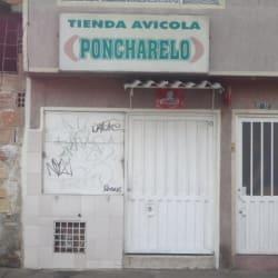 Tienda Avícola Poncharelo en Bogotá
