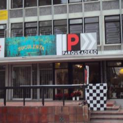 Suculenta en Bogotá