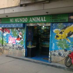 Mi Mundo Animal en Bogotá