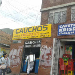 Cauchos Carolina RYC en Bogotá