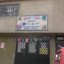 Arte-Led Country Pañalera en Bogotá