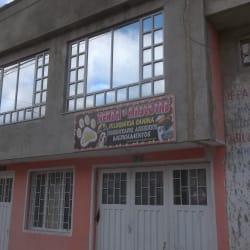 Club Animal en Bogotá