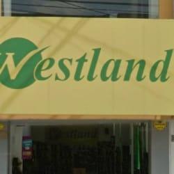 Calzado Westland Restrepo en Bogotá