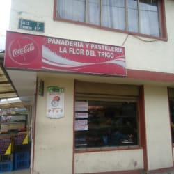 Panadería y Pastelería La Flor Del Trigo en Bogotá