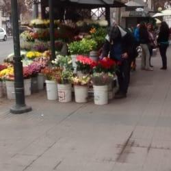 Kiosko en Santiago