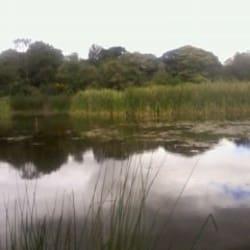 Parque Ecológico Distrital Humedal Santa María del Lago  en Bogotá