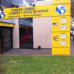 Fenix en Santiago