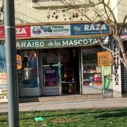 El Paraiso De Las Mascotas en Santiago