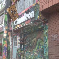 Camaleon en Bogotá