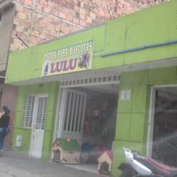 """Tienda Para Mascotas """"Lulu"""" en Bogotá"""