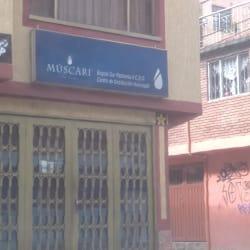 Muscari en Bogotá