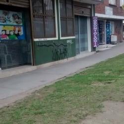 Fisioterapia Camilla Terapeutica Ceragem en Bogotá