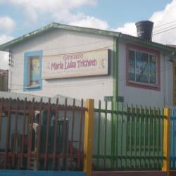 Gimnasio Maria Luisa Tricheth en Bogotá