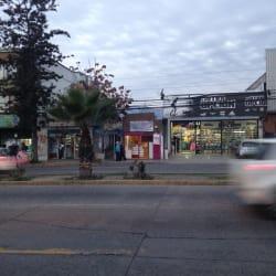 Almacén Malu en Santiago